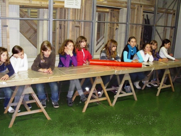 Galaxie in Nöten
